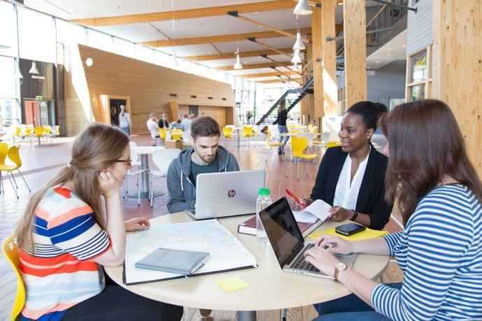 Grupparbete i hus M på campus i Växjö