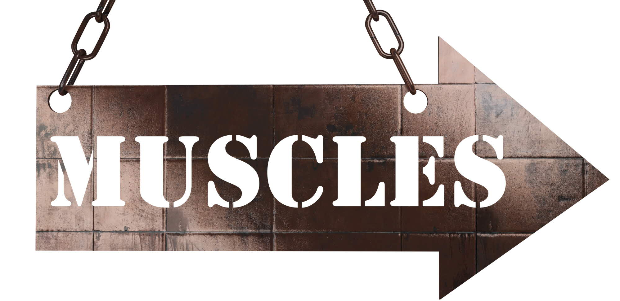 "arrow sign with the text ""muscles"""