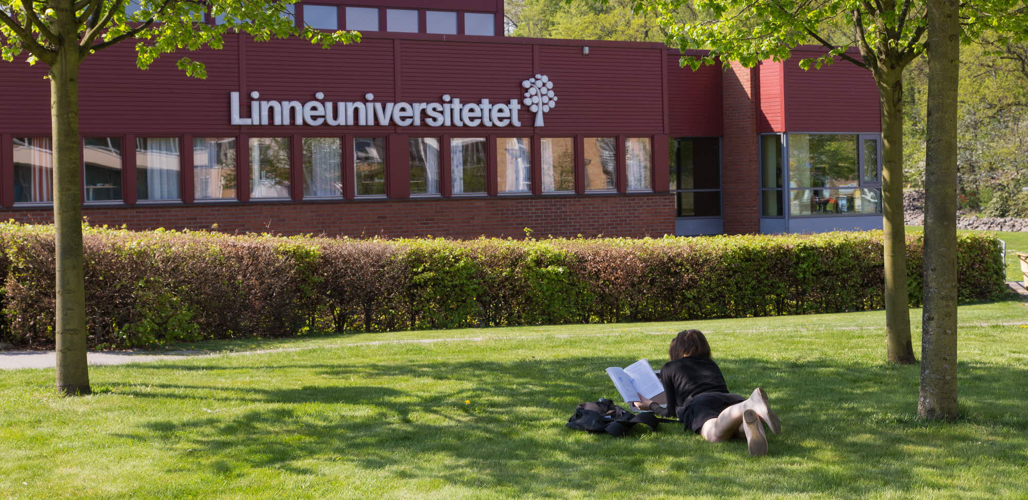 Student studiyng in front of the main building.