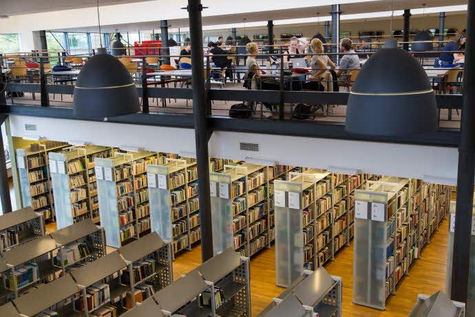 Grupparbete på Universitetsbiblioteket i Kalmar